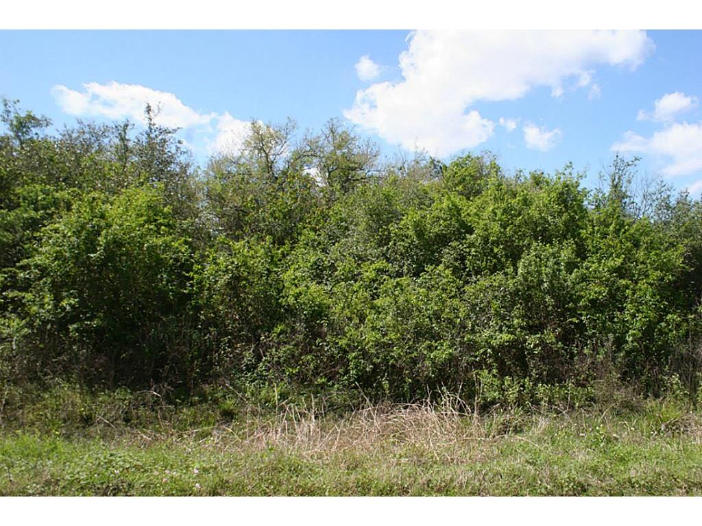 Photo of home for sale at Lot 39 Pecan, Brazoria TX