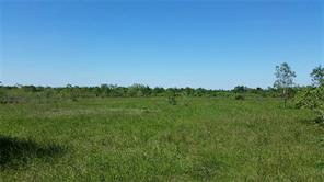 6427 COUNTY ROAD 166, ALVIN, TX 77511  Photo