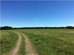22805 OLD PLANTERSVILLE ROAD, MONTGOMERY, TX 77316  Photo 14