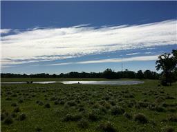 22805 OLD PLANTERSVILLE ROAD, MONTGOMERY, TX 77316  Photo 15