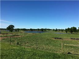 22805 OLD PLANTERSVILLE ROAD, MONTGOMERY, TX 77316  Photo 18