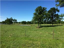 22805 OLD PLANTERSVILLE ROAD, MONTGOMERY, TX 77316  Photo 7