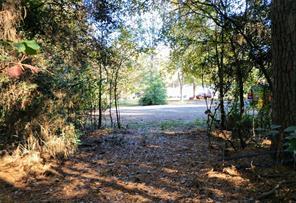 15434 PEACOCK LANE, CONROE, TX 77302  Photo 1