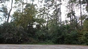 15434 PEACOCK LANE, CONROE, TX 77302  Photo 2