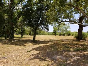 Property for sale at 4646 County Road 181, Alvin,  Texas 77511