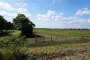 Property for sale at 0 County Road 167, Alvin,  Texas 77511