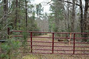 Property for sale at TBD Sylvia Trail, Coldspring,  Texas 77331