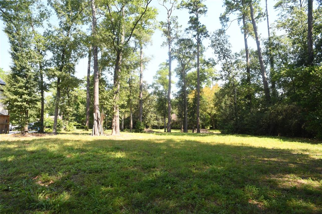11 Woods Edge Lane Piney Point Village, TX 77024