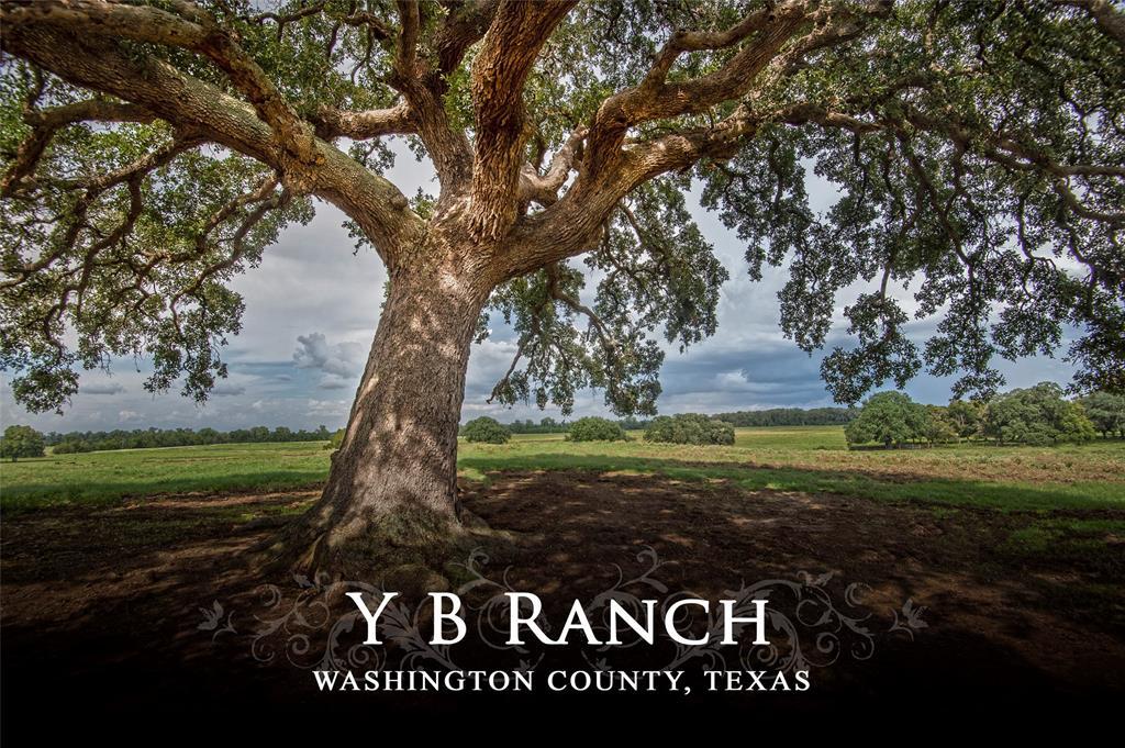 13409 MERTINS CREEK ROAD, BRENHAM, TX 77833 | I The Country on bosque river map, llano river map, brazos river map, paluxy river map, frio river map, san marcos river map,