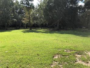 18072 SPLIT OAK CIRCLE, NEW CANEY, TX 77357  Photo 16