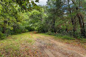 41834 STEPHENS ROAD, HEMPSTEAD, TX 77445  Photo 26