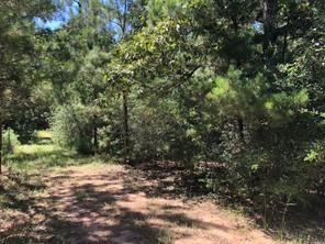 Property for sale at 0 Nichols Sawmill Road, Magnolia,  Texas 77355