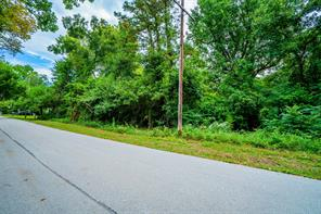 Property for sale at TBD Old Sycamore Avenue, Huntsville,  Texas 77340