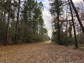 Property for sale at 93 Ac Gibbs Pipeline Road, Willis,  Texas 77378