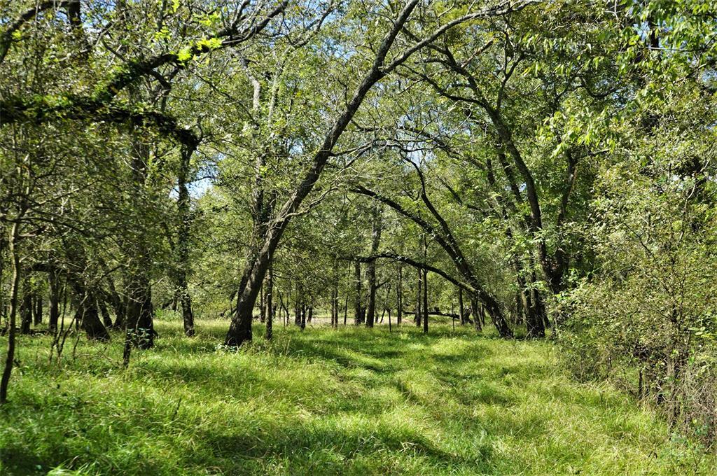 37594 Darst Road Beasley, TX 77417