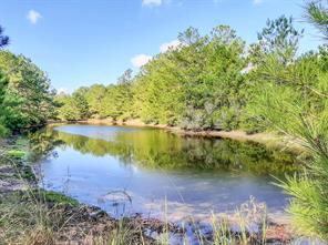 Property for sale at 110 Bo Brown Road, Trinity,  Texas 75862