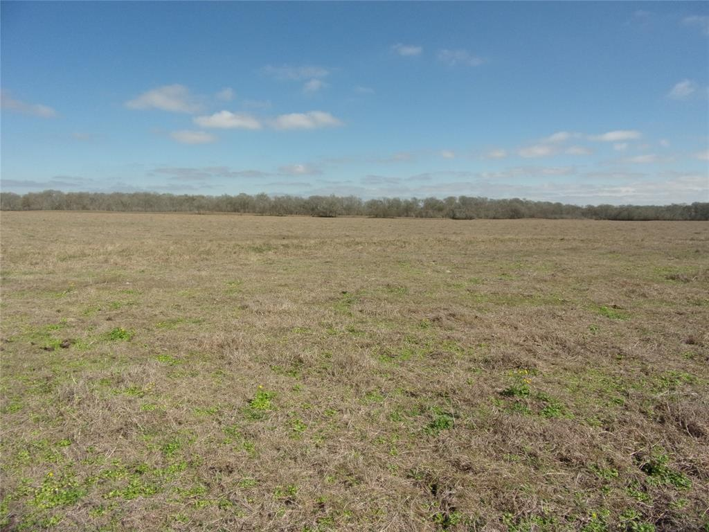4950 County Road 119 Hungerford, TX 77448