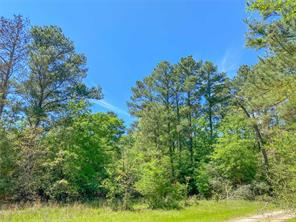 Property for sale at 00 Fm 2989, Huntsville,  Texas 77320